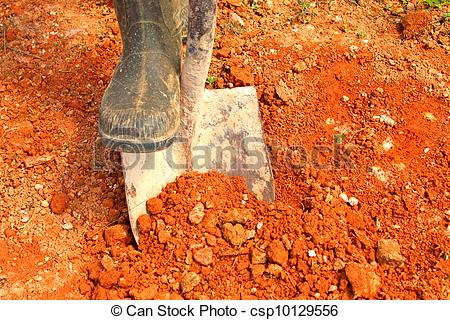 Stock Images of digging with shovel.
