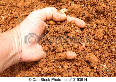 Pictures of red clay soil.