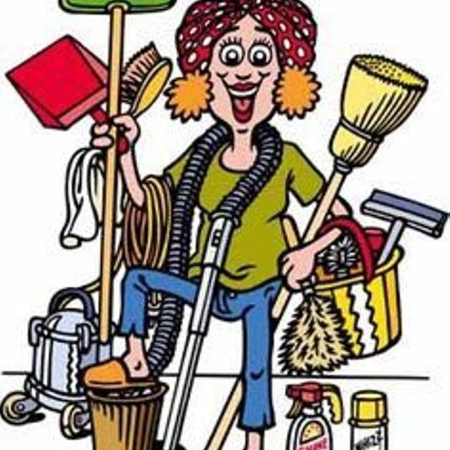 The Cleaning Fairy in Hanover, Ontario for 2019.