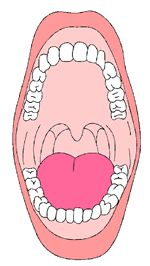 Cleaning Inside Mouth Clipart Black And White Clipground
