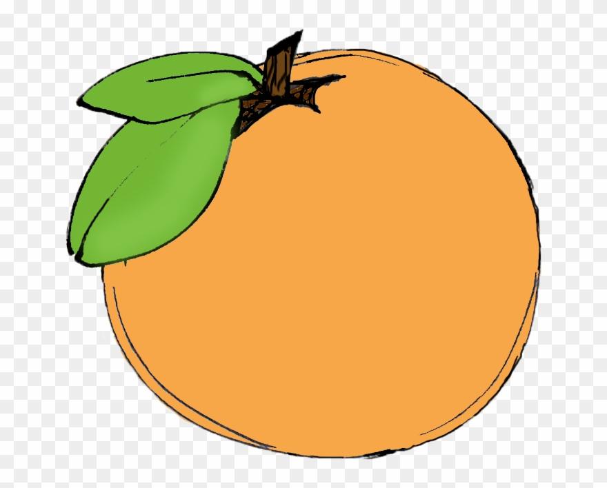 Clementine Clip Art.