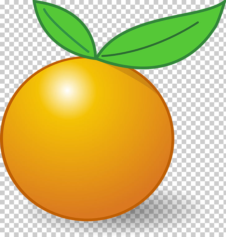 Clementine Tangerine , apricot PNG clipart.