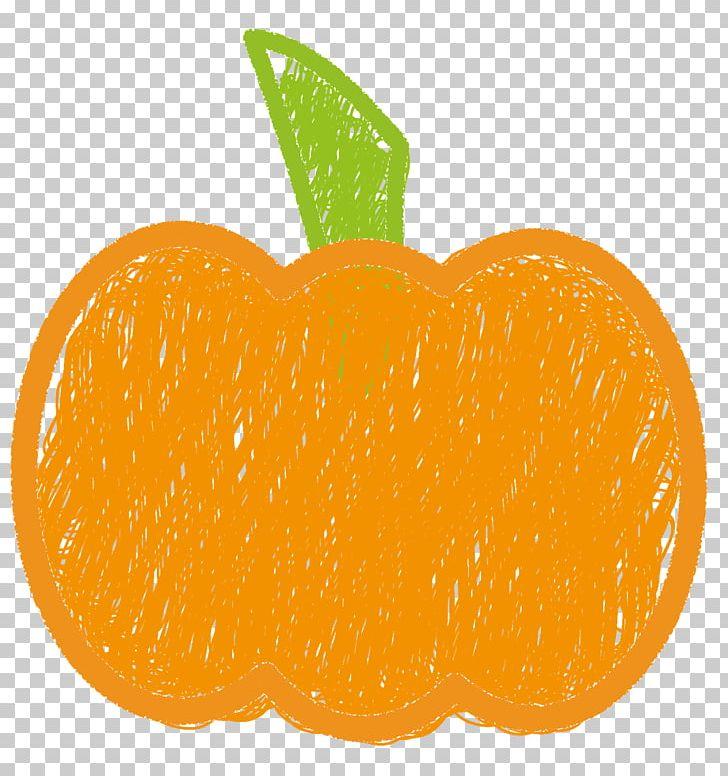 Clementine Mandarin Orange Tangerine Tangelo PNG, Clipart.