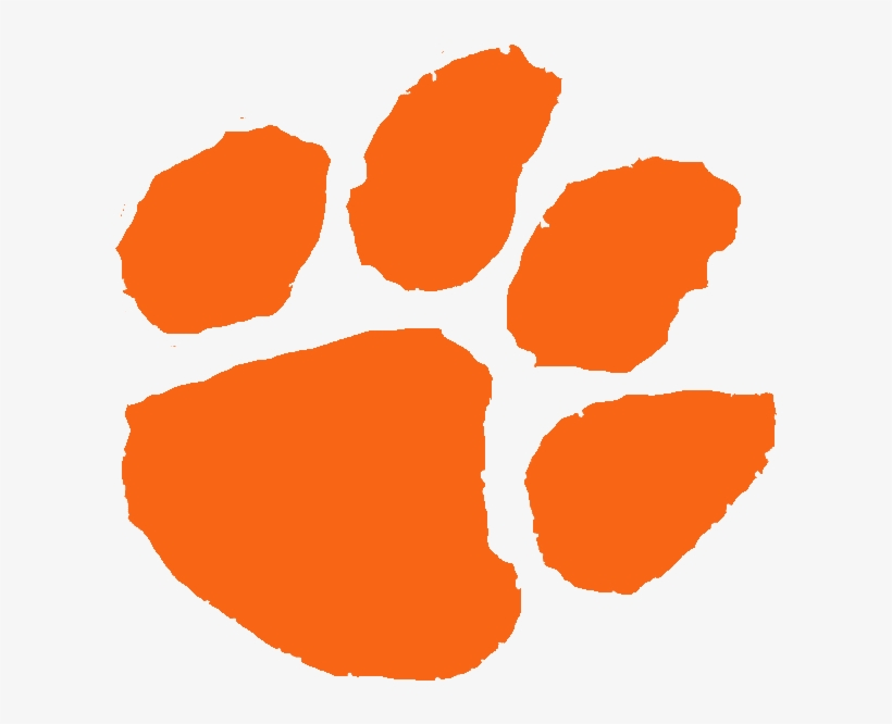 Tiger Paw Picture.