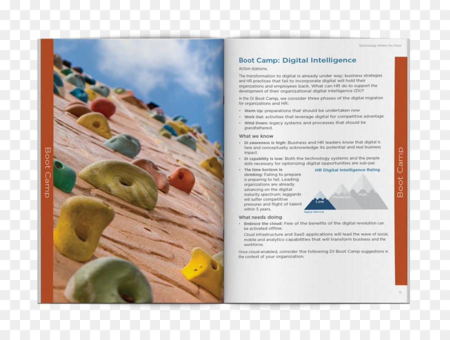 Brochure Background png download.