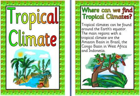 Tropical climate clipart.