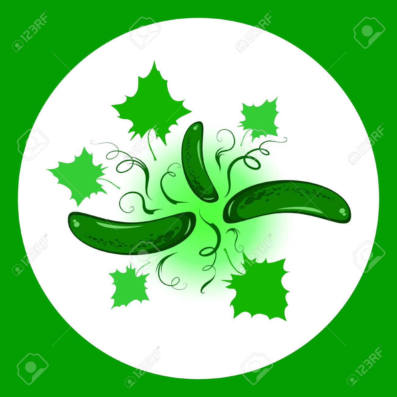 The Green Cucumbers, Sheets And Climbing Tendrils. Vector.