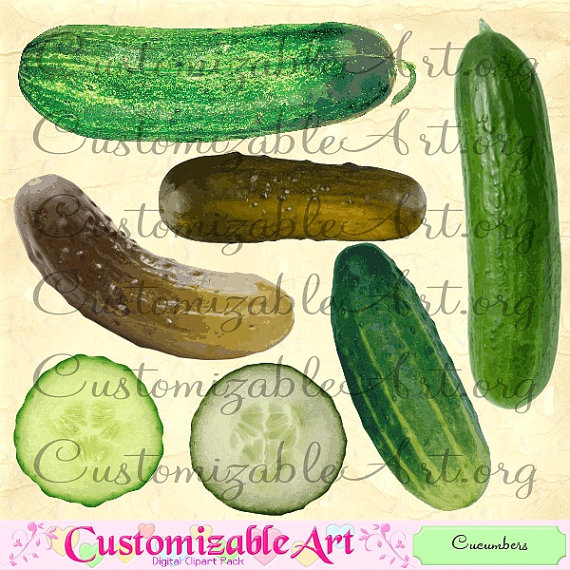 Cucumber Clipart Digital Cucumber Clip Art by CustomizableArt.