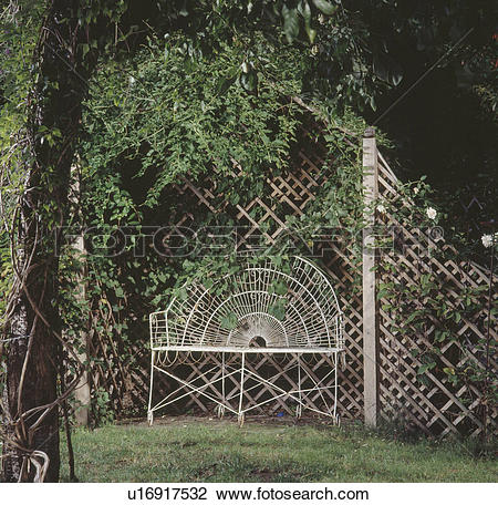 Stock Photo of White metal bench in trellis arbour with climbing.
