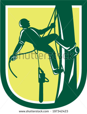 Tree Climbing Stock Vectors, Images & Vector Art.