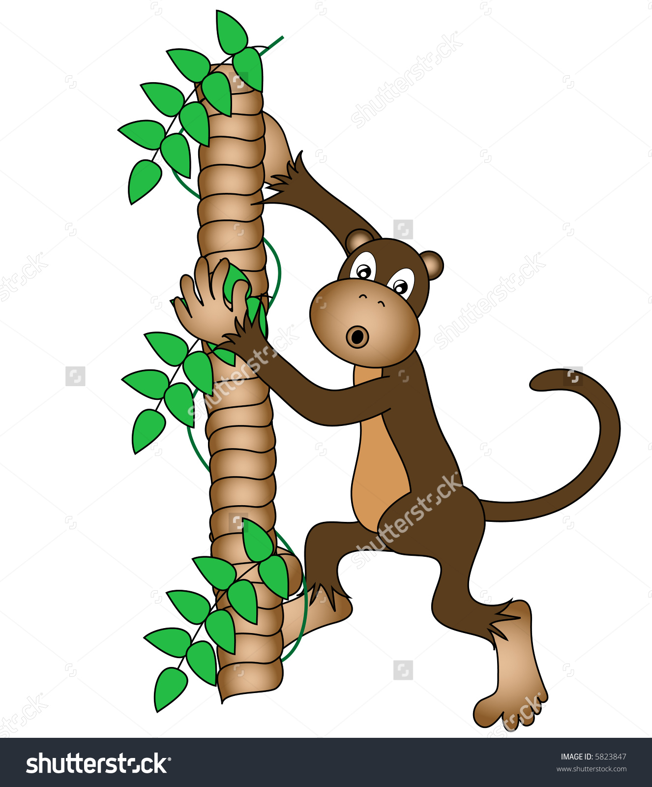 Monkey With A Confused Expression Climbing A Tree. Stock Photo.