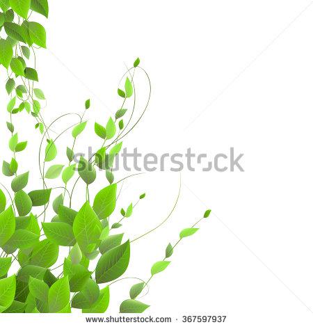 11+ Climbing Plant Clip Art.