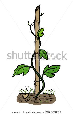 Climbing Plant Clip Art.