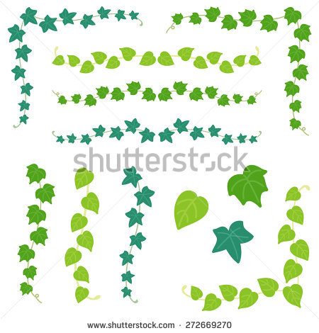 Climbing Plant Stock Photos, Royalty.