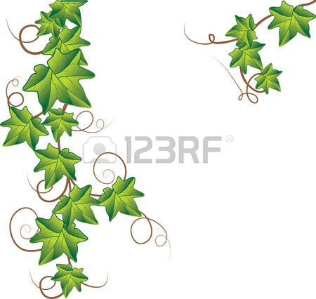 449 Climbing Vine Cliparts, Stock Vector And Royalty Free Climbing.