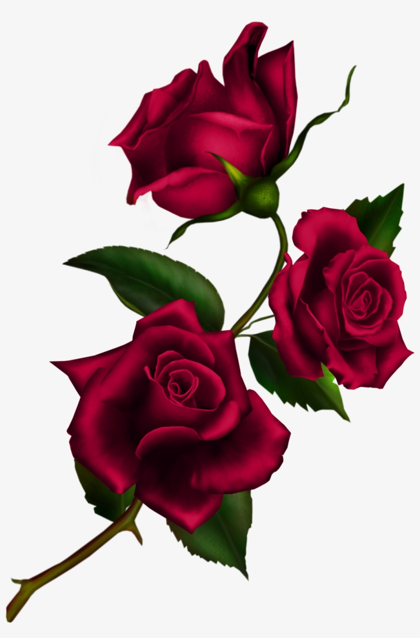 Free Download Rose Gothic Png Clipart Rose Clip Art.