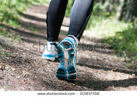 Walking Trail Stock Photos, Royalty.