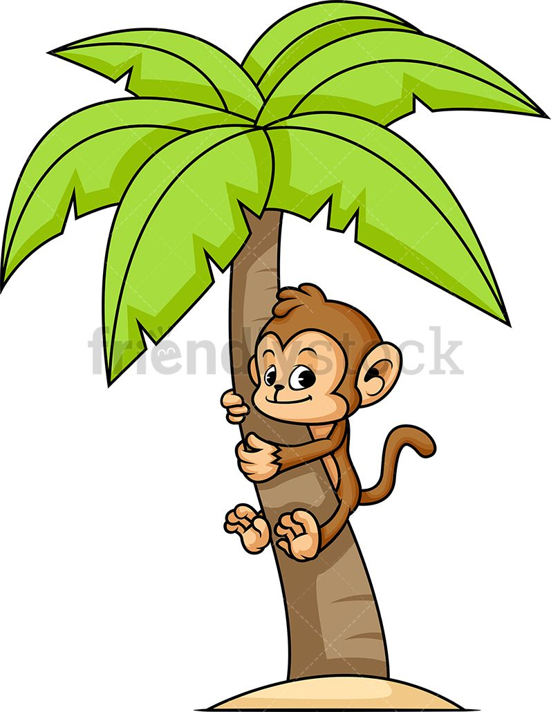 Monkey Climbing Palm Tree.