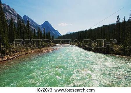 Stock Photo of kootenay plains, alberta, canada; siffleur river.