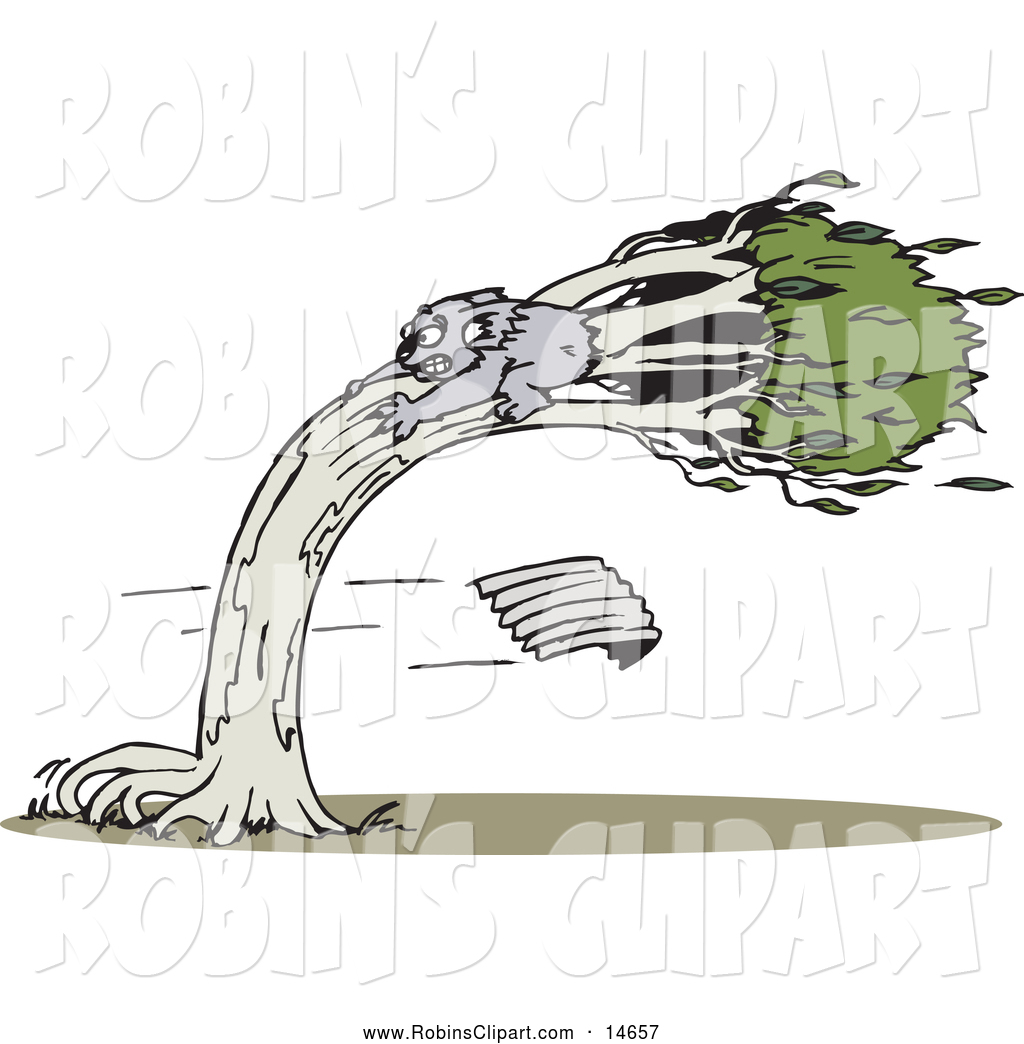 Clip Art of a Koala Clinging to a Tree in a Wind Storm by Dennis.