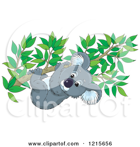 Clipart of a Cute Koala Clinging to a Tree Branch.