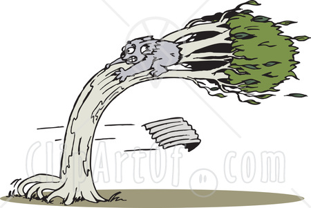Holding on to tree in wind clipart.