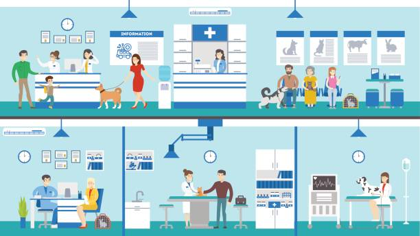 Best Veterinary Clinic Illustrations, Royalty.