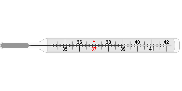 Free pictures THERMOMETER.
