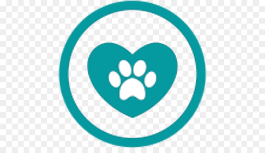 Veterinarian Cat Labrador Retriever Clinique vétérinaire.