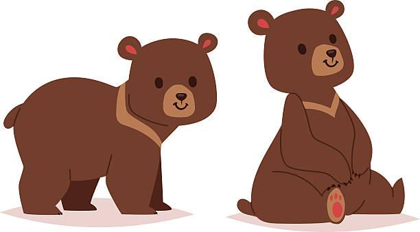 Best Brown Bear Cub Illustrations, Royalty.