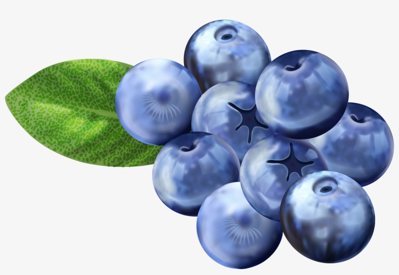 Blueberry Clipart Png.