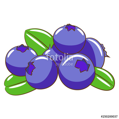 Blueberry vector clipart