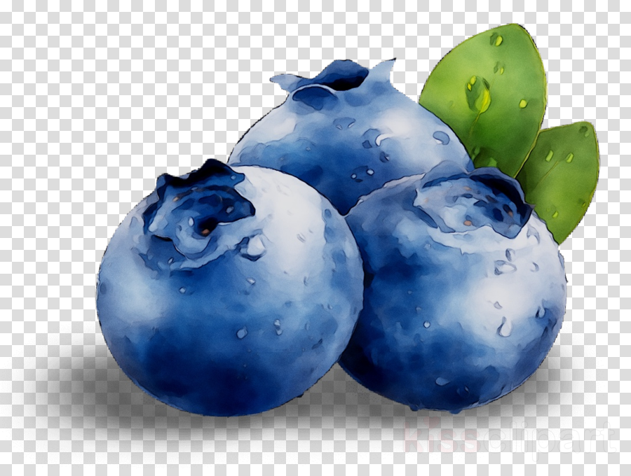 Fruit Cartoon clipart.