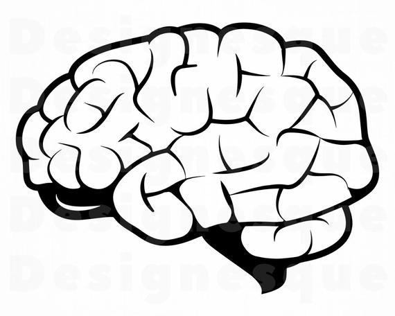 Brain #2 SVG, Brain Svg, Brain Clipart, Brain Files for Cricut, Brain Cut  Files For Silhouette, Brain Dxf, Brain Png, Eps, Svg, Brain Vector.