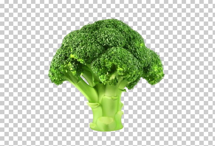 Broccoli Vegetable PNG, Clipart, Broccoli, Can Stock Photo, Clip Art.