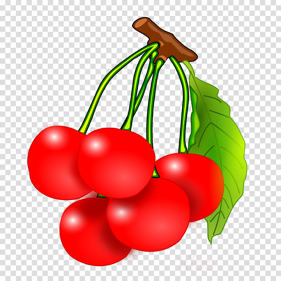 Cherries Clipart to printable.
