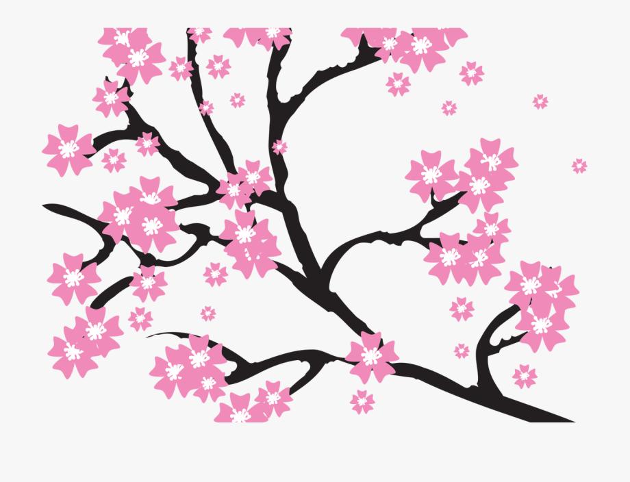 Sakura Flower Picture Transparent Stock Techflourish.
