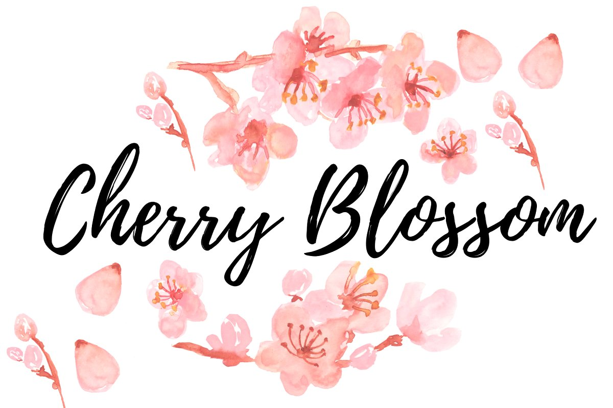 Watercolor clipart cherry blossom.