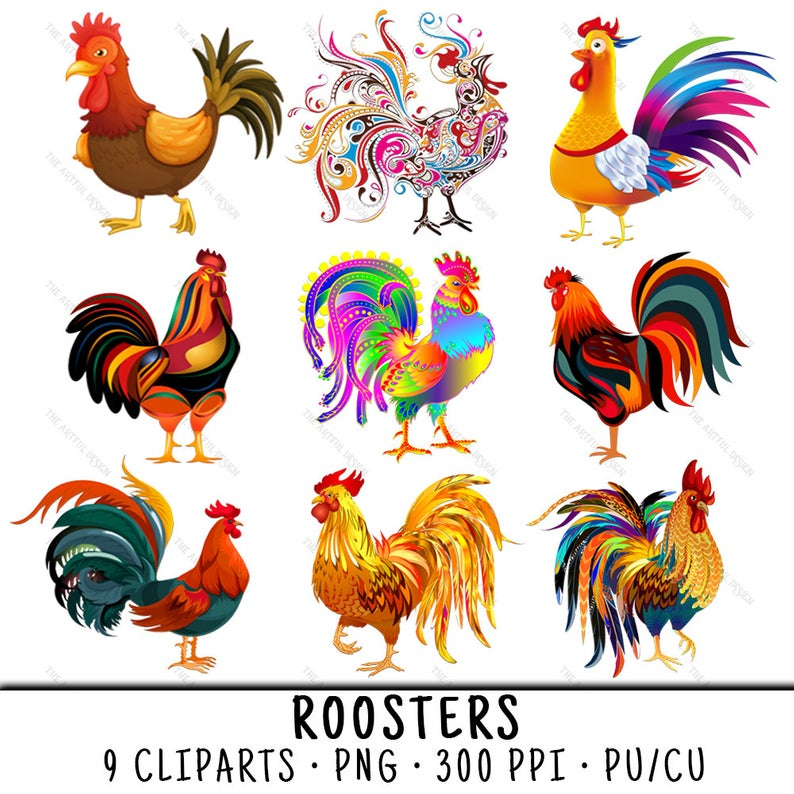 Rooster Clipart, Chicken Clipart, Rooster Clip Art, Chicken Clip Art,  Rooster PNG, Chicken PNG, Clipart Rooster, Colorful Chickens.