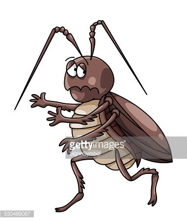 Cockroaches premium clipart.