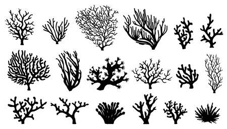 27,687 Coral Cliparts, Stock Vector And Royalty Free Coral Illustrations.