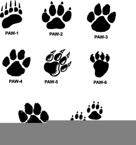Clipart Cougar Paws.