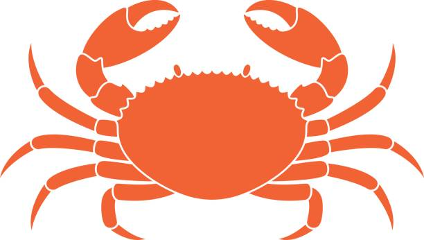 Best Crab Illustrations, Royalty.
