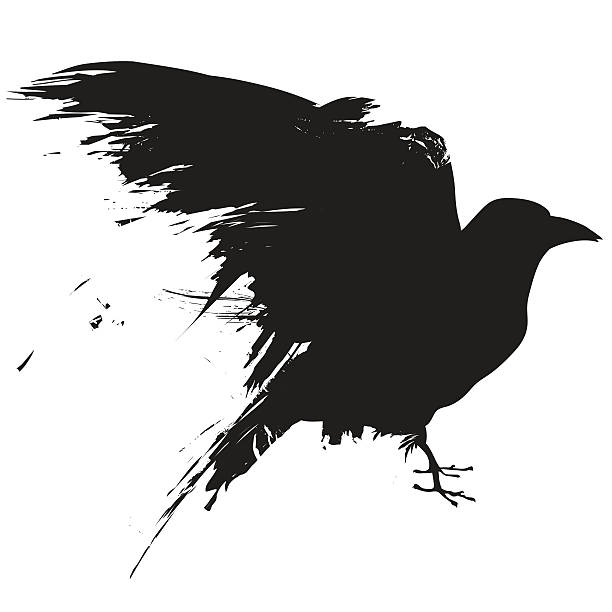 Best Crow Illustrations, Royalty.