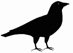 Free Crows Clipart.
