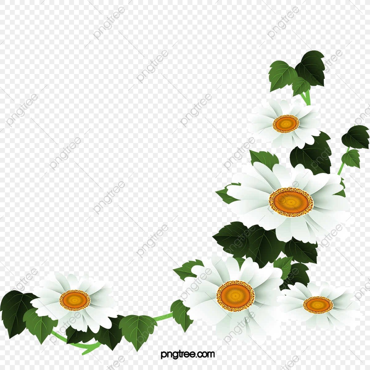 White Daisy Flower Decoration Pattern, Daisy Clipart, Flower Clipart.
