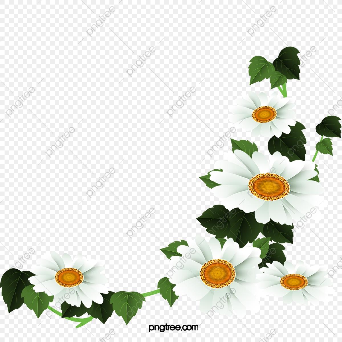 White Daisy Flower Decoration Pattern, Daisy Clipart, Flower Clipart.