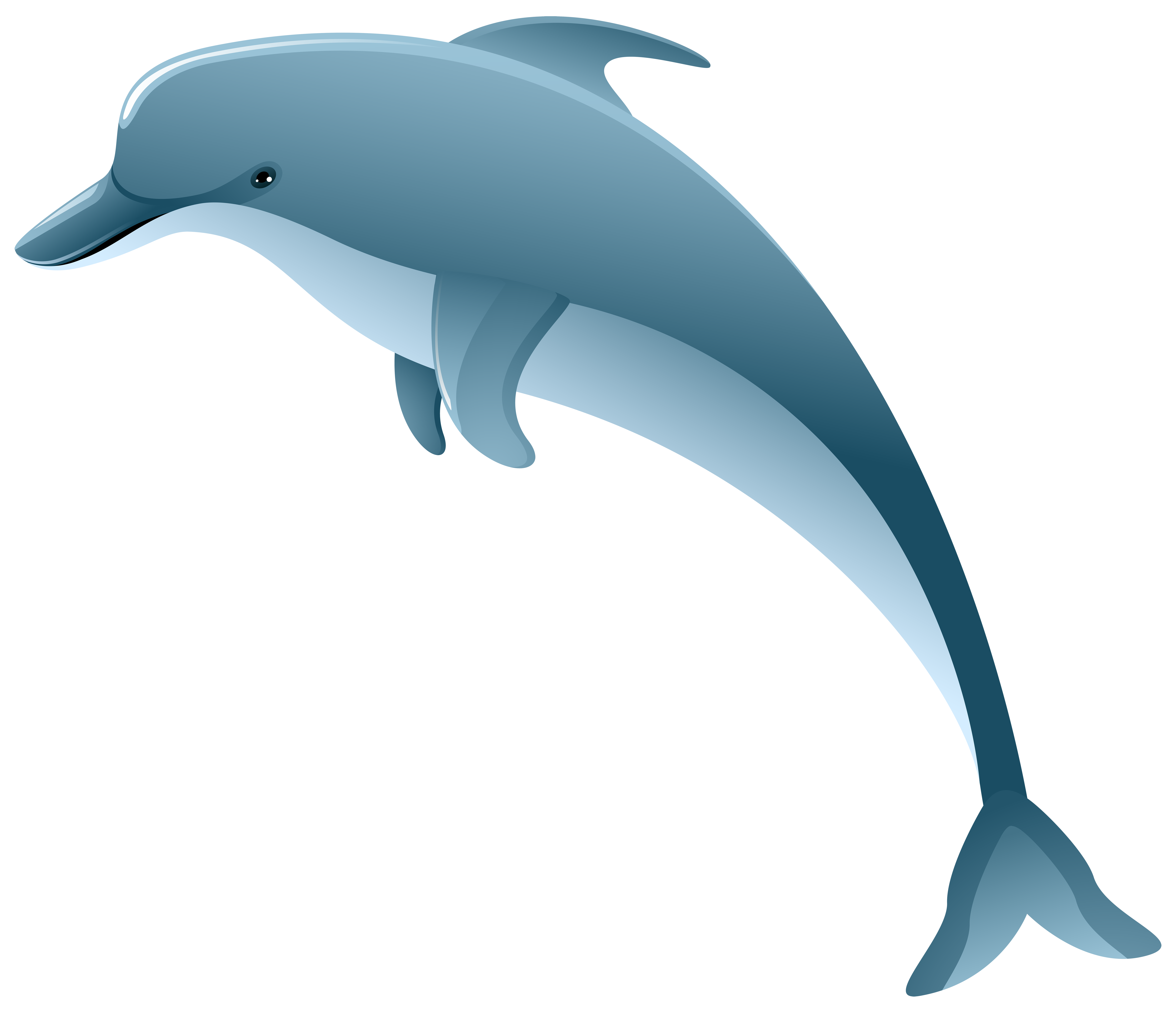 Dolphin PNG Clip Art Image.