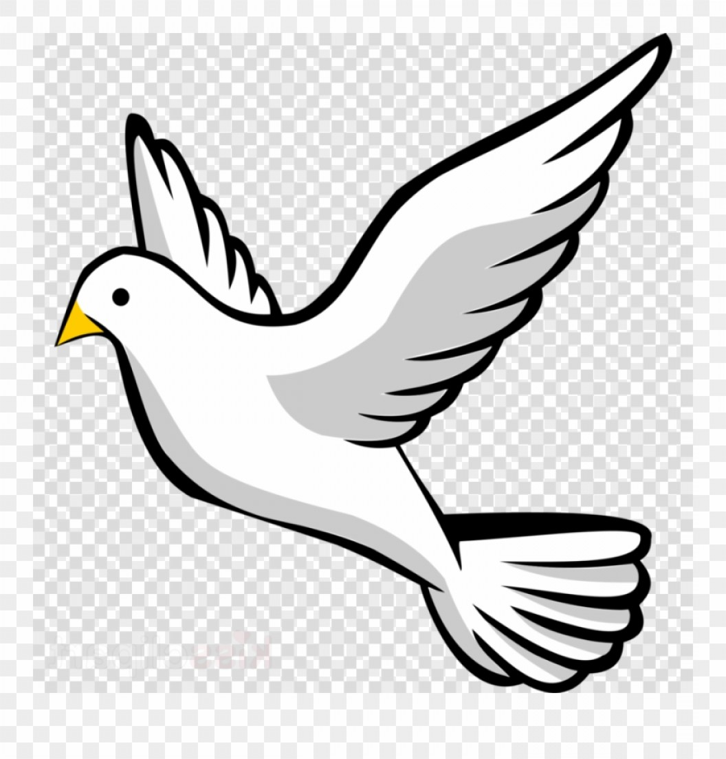 Ooroxbdove Clipart Pigeons And Doves Clip Art Dove.