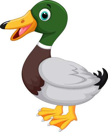 39,642 Duck Stock Illustrations, Cliparts And Royalty Free Duck Vectors.